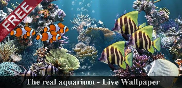 живые обои аквариум: