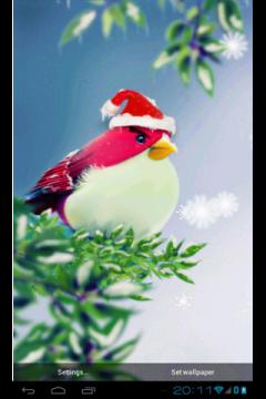Natural Angry Birds