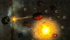 Вторжение насекомых