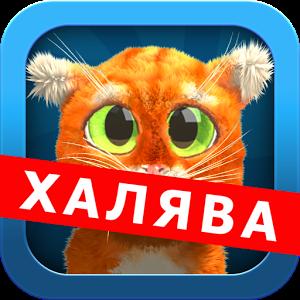 Дерзкий Котэ (Говорящий кот)