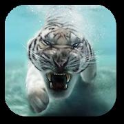 Тигр Живые обои на Андроид